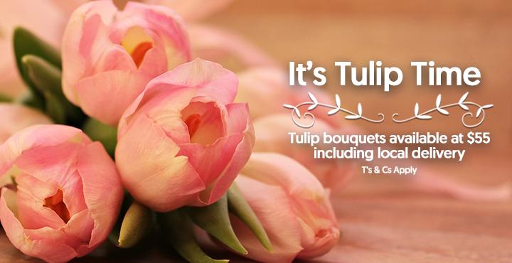 WebBanner - Tulip Time
